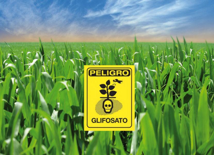 Glifosato y producción de alimentos en México